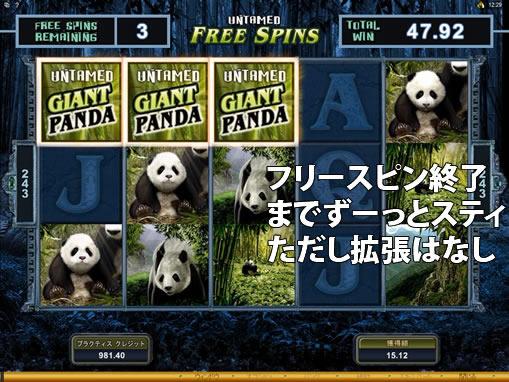 UNTAMED ジャイアントパンダ