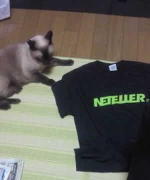 ネッテラーTシャツ