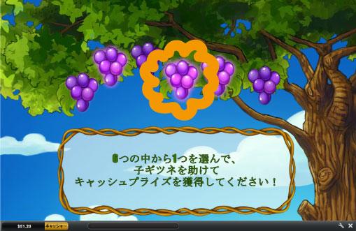 ブドウを選ぶボーナス