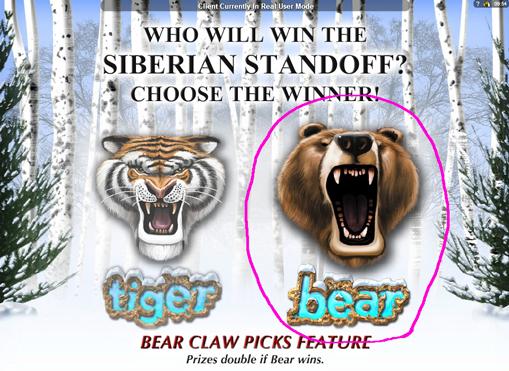 クマを選択