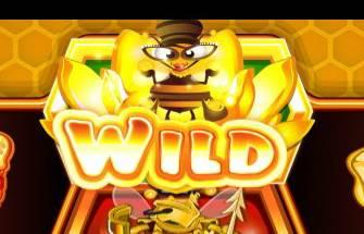 蜂が登場してWILDに変化