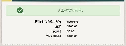 エコペイズで100ドル入金
