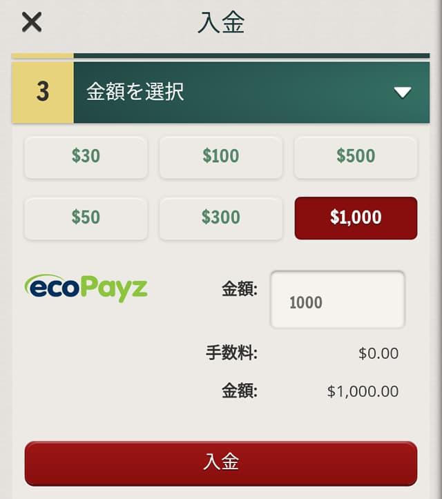 チェリーカジノ エコペイズの入金画面3