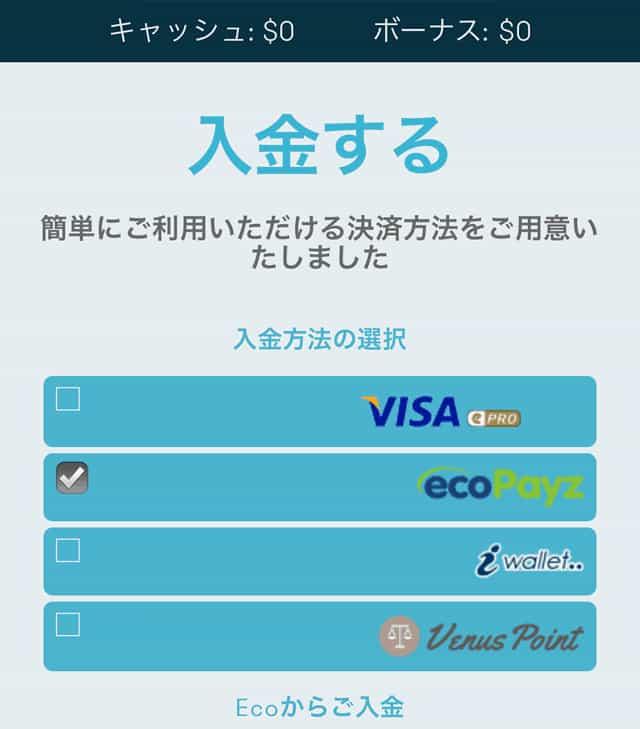 エコペイズの入金画面