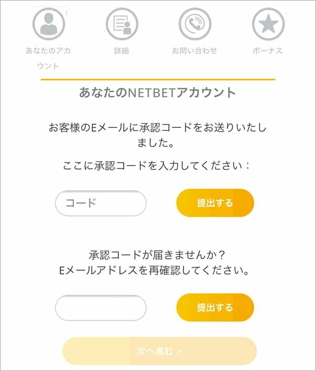ネットベットカジノ登録画面2