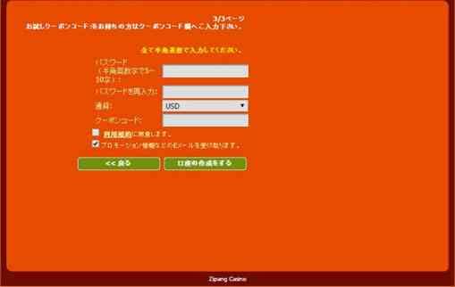 利用規約とパスワードとチップコードの3ページ目