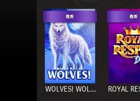 白い狼のスロット