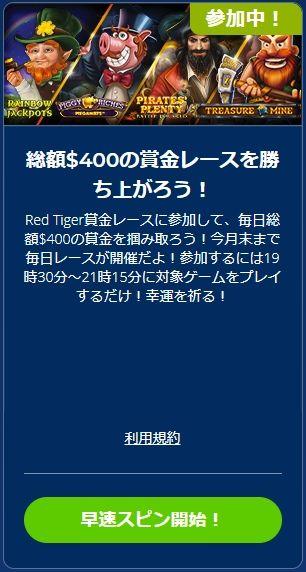 RED TIGER協賛レース