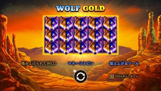 WOLF GOLD説明