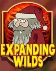 EXPANDINGWILD図柄