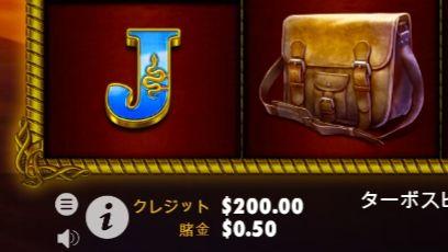掛け金$0.50