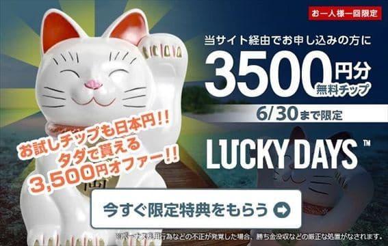 ラッキーデイズのネコ