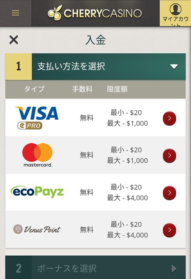 チェリーカジノ クレジットカードの入金画面1