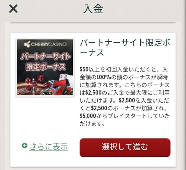 チェリーカジノ クレジットカードの入金画面2