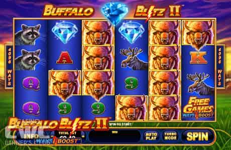 BuffaloBlitz2